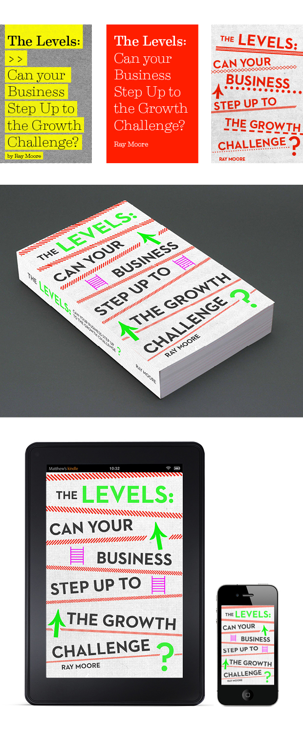 Business & Finance Book Cover Design – The Levels